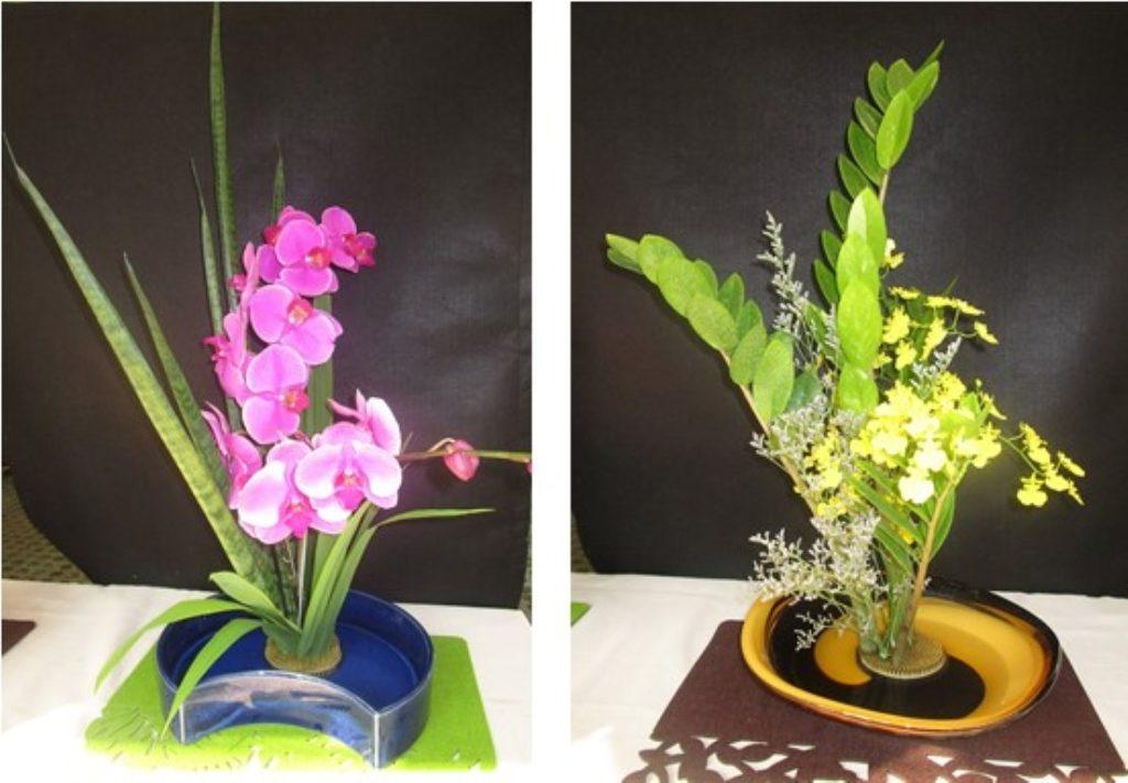 orchid2 (Medium)