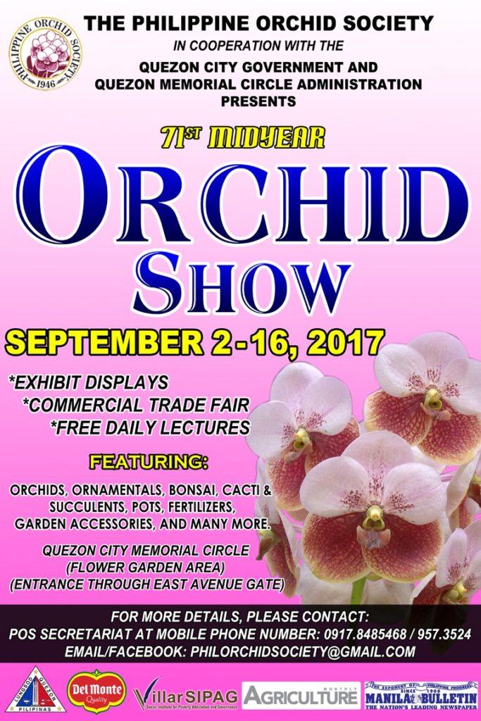 orchid31re copy (Medium)